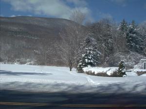 8. Winter